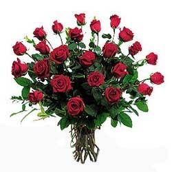 Rose Rosse Per Te Luca What A Woman Wants